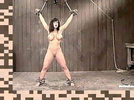 lisa ann bdsm